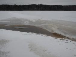 Manchmal bilden sich auch kleine Pfützen auf dem Eis.